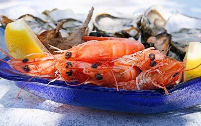El marisco en Verano por marisquería restaurante Hermanos Alvarez